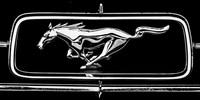 Ford Mustang 1967 – zabytkowe auto do ślubu